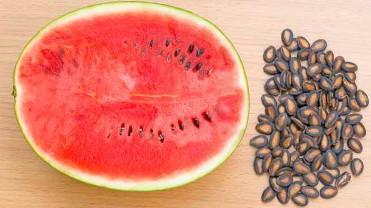 Five Health Benefits Of Water Melon Seeds
