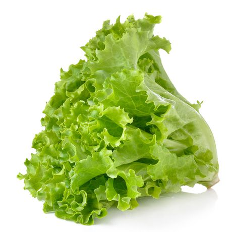5 Reasons To Eat More Of Lettuce